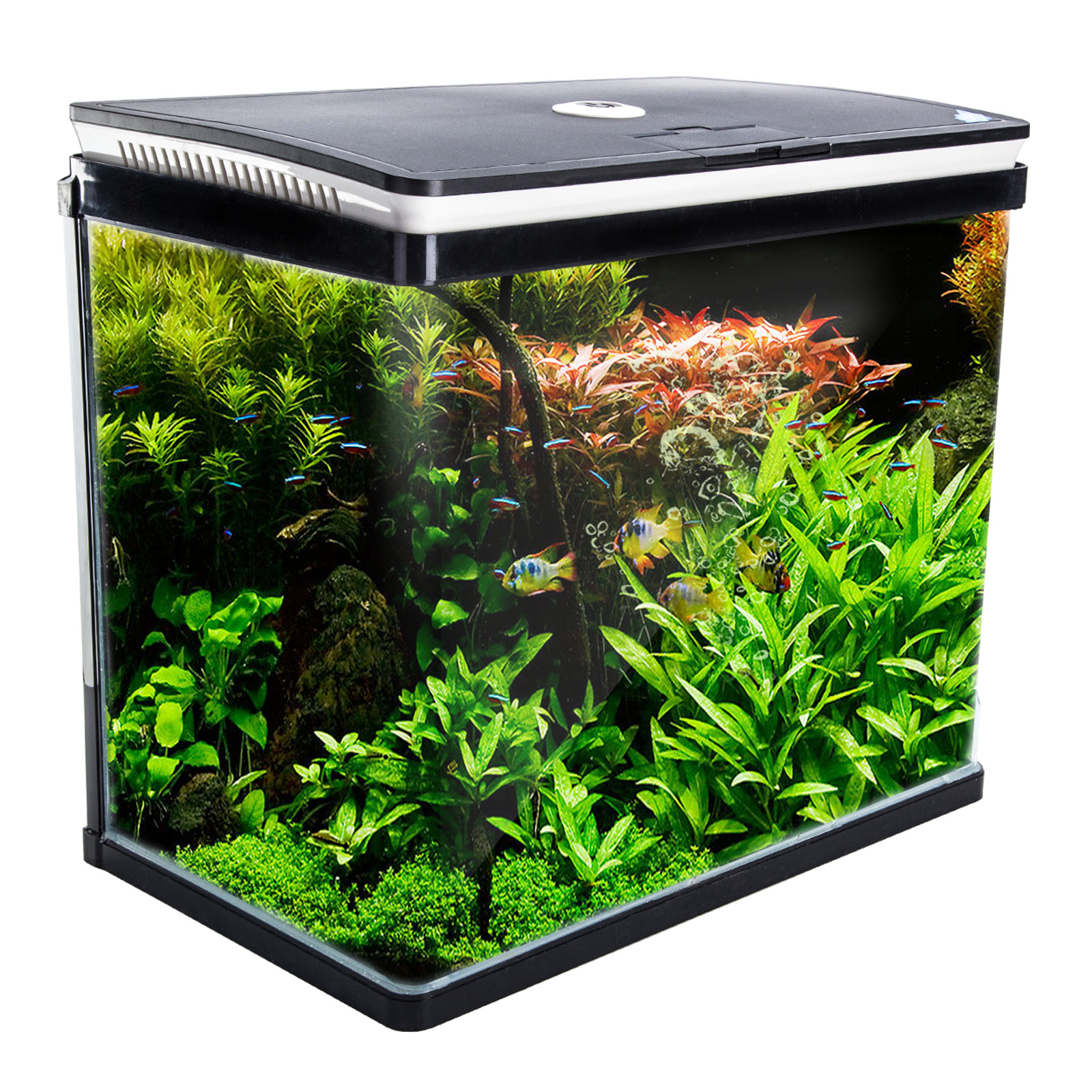 Aquarium Curved Glass RGB LED Fish Tank 52L